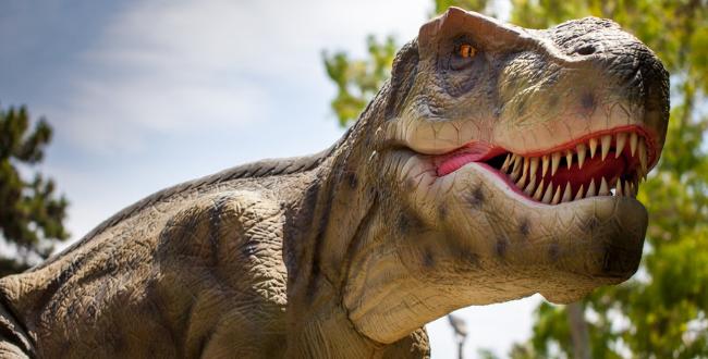 Dinosauri viventi al Luneurpark